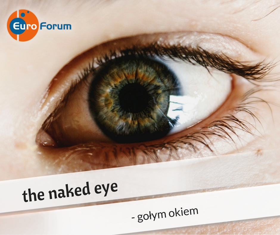 Naked eye - Euro-Forum Idiom