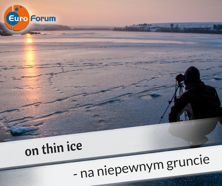 On thin ice - Euro-Forum Idiom